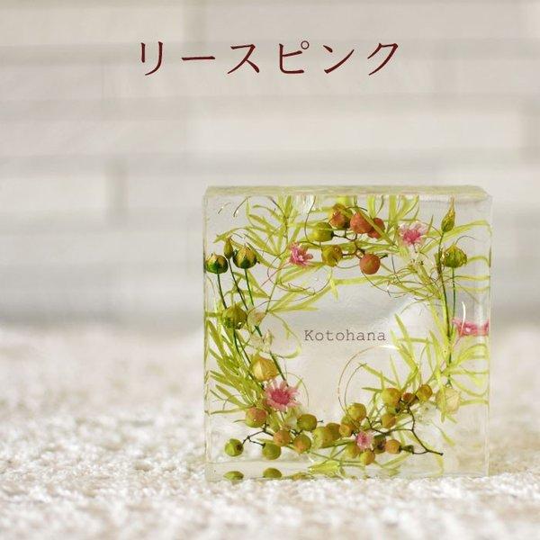 kotohana_cristal_2