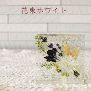 kotohana_cristal_5