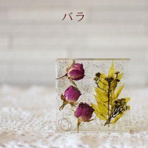 kotohana_cristal_8