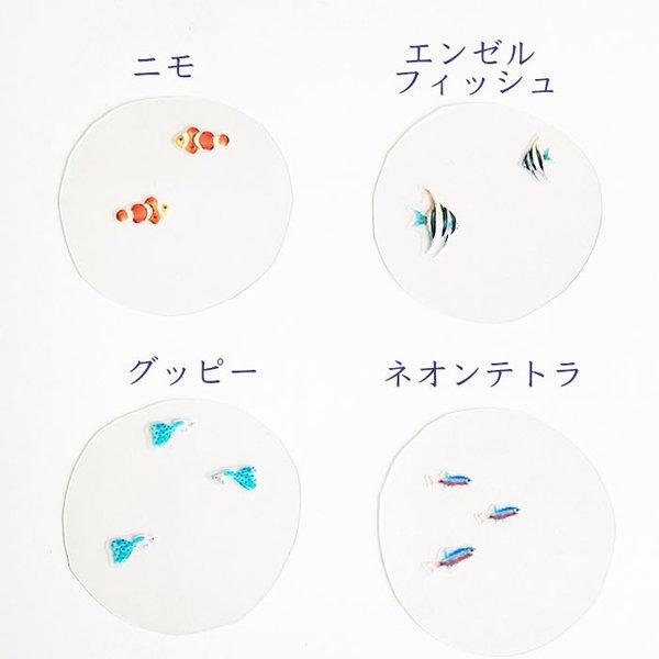 kotohana_fish_4
