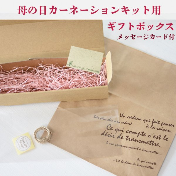 kotohana_herbarium-2019kit_7