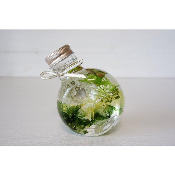 kotohana_herbarium-green_3