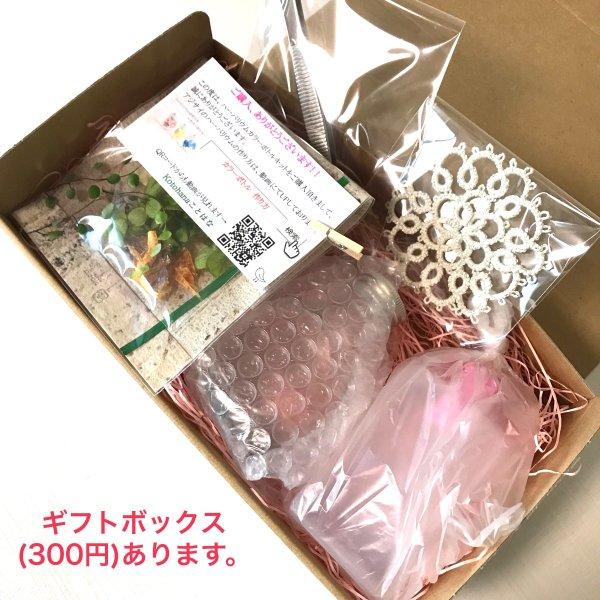 kotohana_herbarium-kit5_8