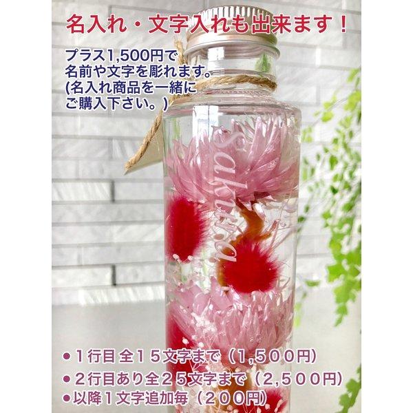 kotohana_herbarium-mimoza1_3