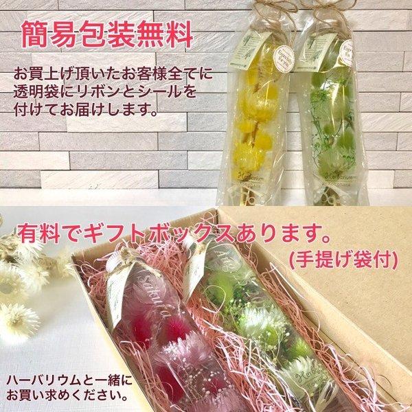 kotohana_herbarium-mimoza2_3