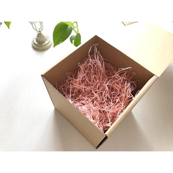 kotohana_herbarium-mimoza5_3
