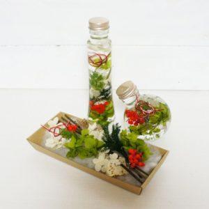 kotohana_herbarium-syougatu_1