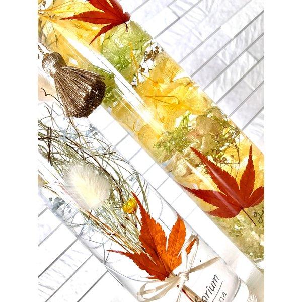 kotohana_herbarium26_2