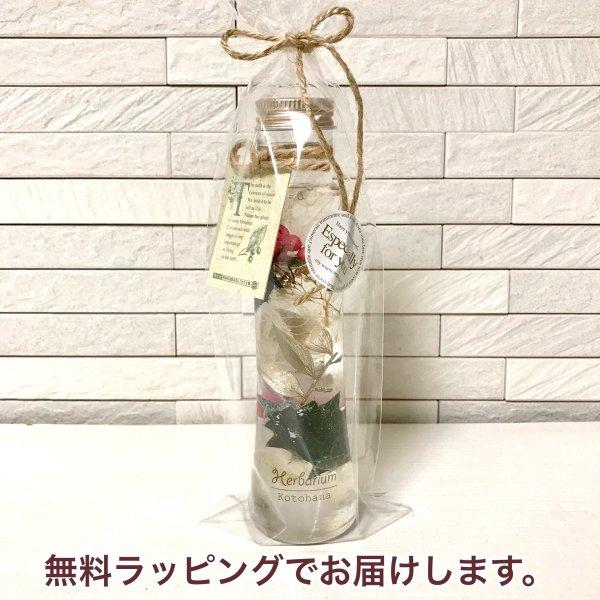 kotohana_herbarium29_1