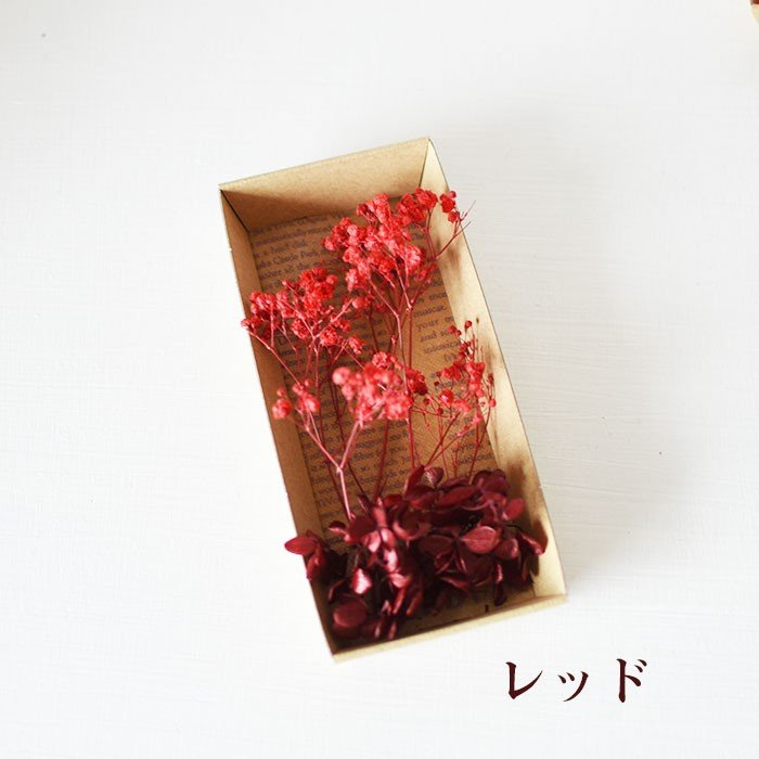 kotohana_kasumi_5