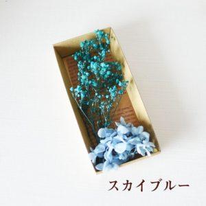 kotohana_kasumi_7