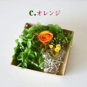 kotohana_kazai-bara_3