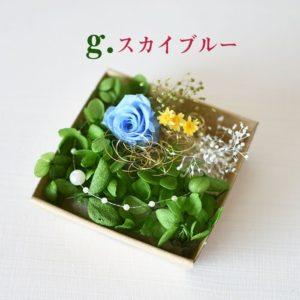 kotohana_kazai-bara_7