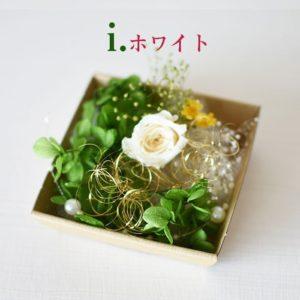 kotohana_kazai-bara_9
